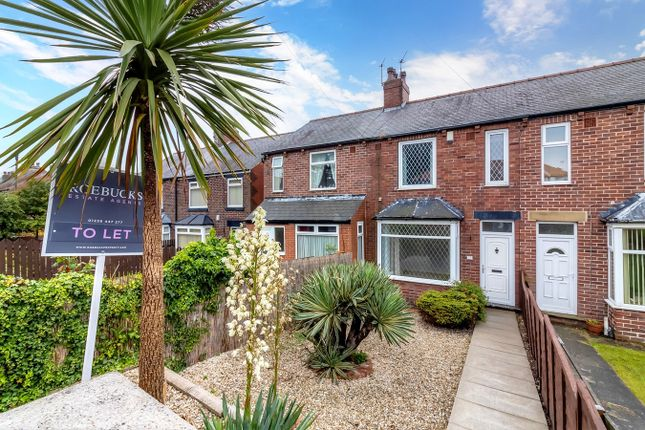 3 bed terraced house to rent in Pogmoor Road, Barnsley S75