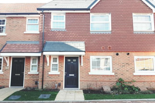 Thumbnail Terraced house to rent in Copper Beech Close, Maidstone