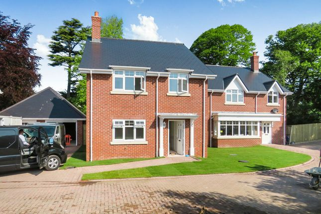 Thumbnail Detached house for sale in Warmwell Road, Crossways, Dorchester