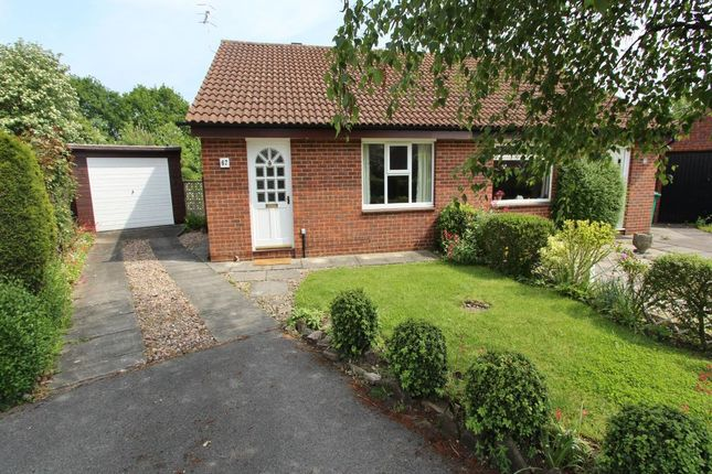 Thumbnail Bungalow to rent in Dean Close, Wollaton, Nottingham