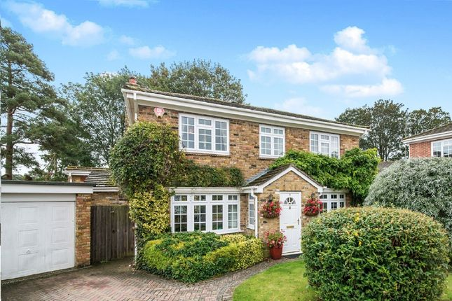 Thumbnail Detached house for sale in Holy Barn Close, Basingstoke