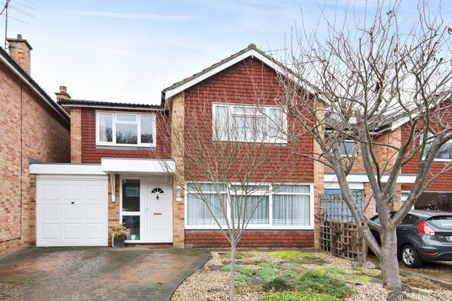 Thumbnail Detached house for sale in Maple Road, Ripley, Woking