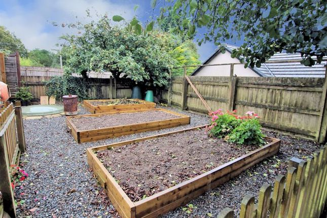 Veg Garden of Canna Park Drive, Highampton, Beaworthy EX21