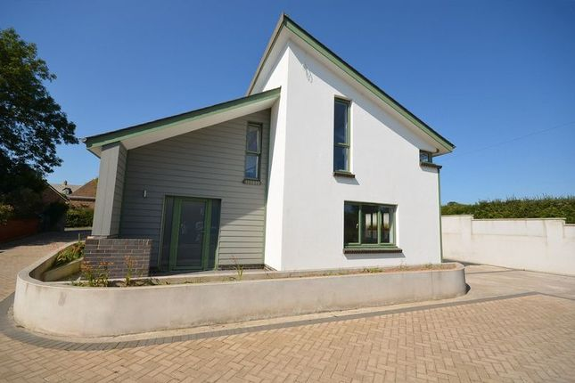 Thumbnail Property for sale in New House, Hillhead, Brixham