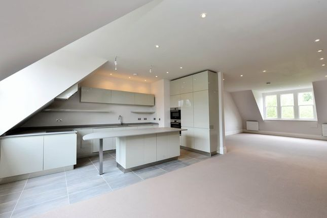 3 Bed Flat To Rent In Heath Drive Hampstead London NW3 44012482 Zoopla