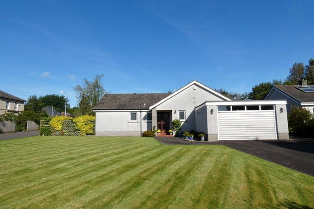 Thumbnail Detached bungalow for sale in Nunholm Place, Dumfries, Dumfries And Galloway