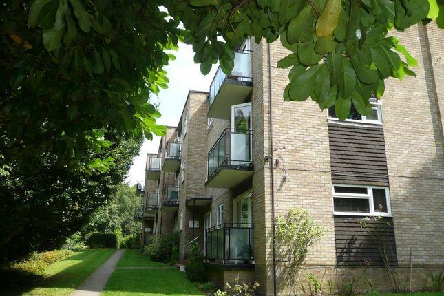 Flat to rent in Highgate Lane, Farnborough