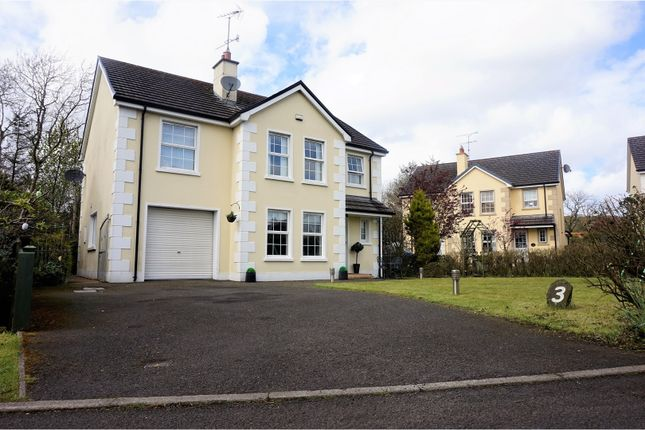 Thumbnail Detached house for sale in Millers Close, Claudy