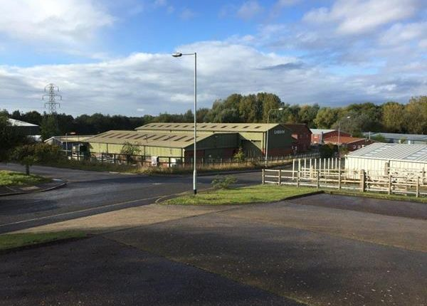 Thumbnail Light industrial for sale in Loddon Industrial Estate, Little Money Road, Loddon Industrial Estate, Loddon
