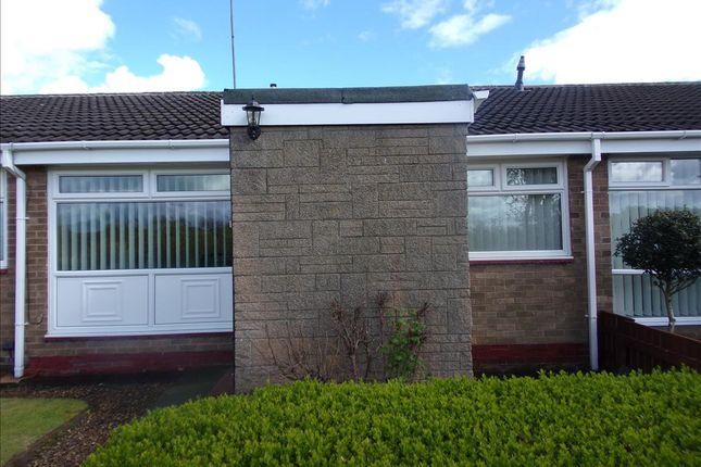 Thumbnail Bungalow to rent in Wedder Law, Cramlington