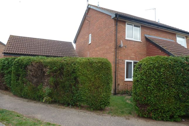 Thumbnail Semi-detached house to rent in Tyndale, North Wootton, King's Lynn