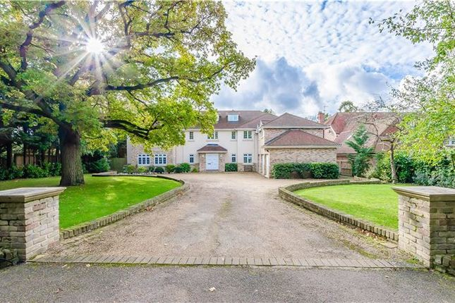 Thumbnail Detached house for sale in Woodlands Close, Great Shelford, Cambridge