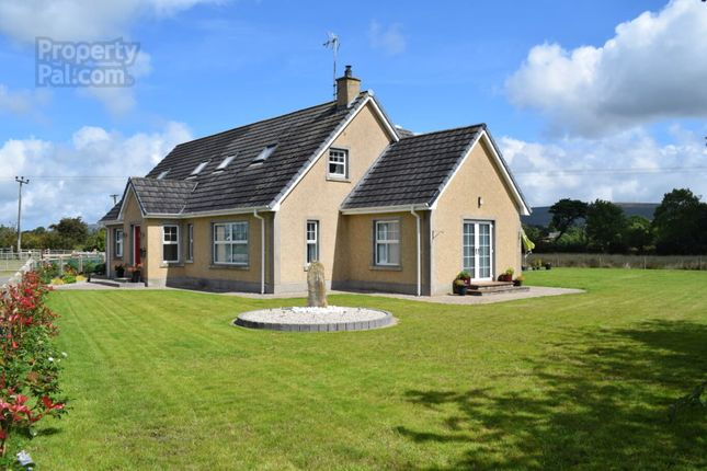 Thumbnail Property for sale in Betts Road, Drumsurn, Limavady