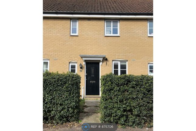 2 bed terraced house to rent in Etive Close, Attleborough NR17