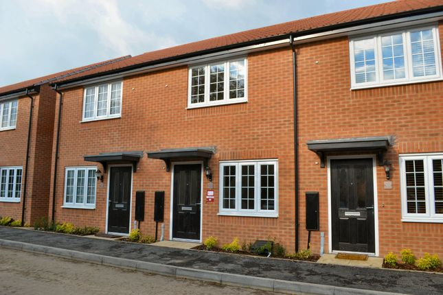 Thumbnail Terraced house to rent in Coleridge Way, Oakham