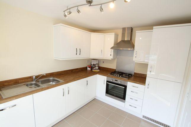 Thumbnail Semi-detached house to rent in Skylark Road, Bodicote