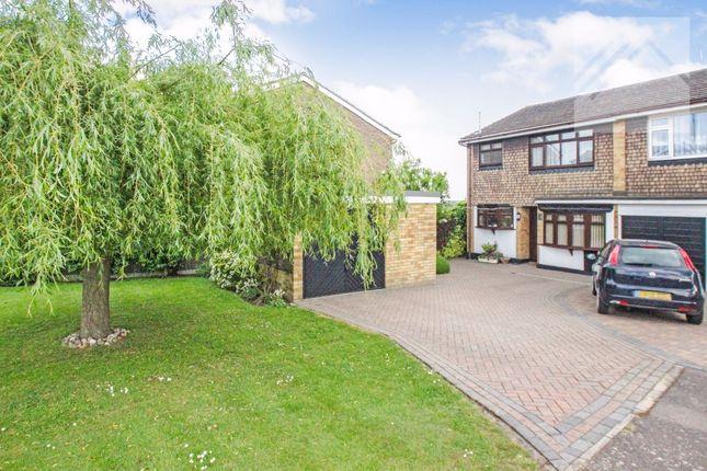 Thumbnail Semi-detached house for sale in Brackendale Avenue, Pitsea, Basildon