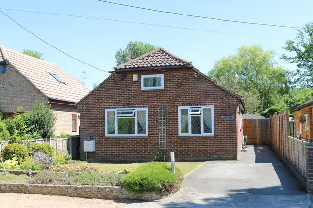 Thumbnail Bungalow for sale in Green Lane, Ockham, Woking