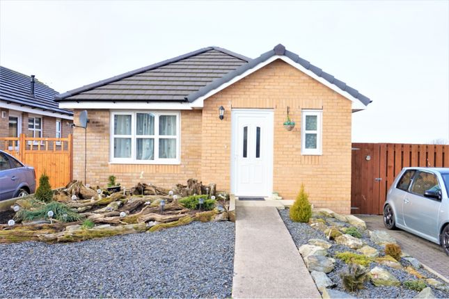 Thumbnail Detached bungalow for sale in Crompton Drive, Dalton-In-Furness