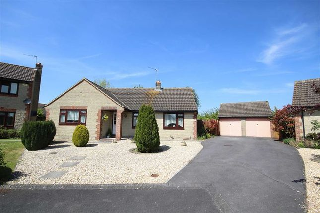 Thumbnail Detached bungalow for sale in Powell Rise, Malmesbury, Wiltshire