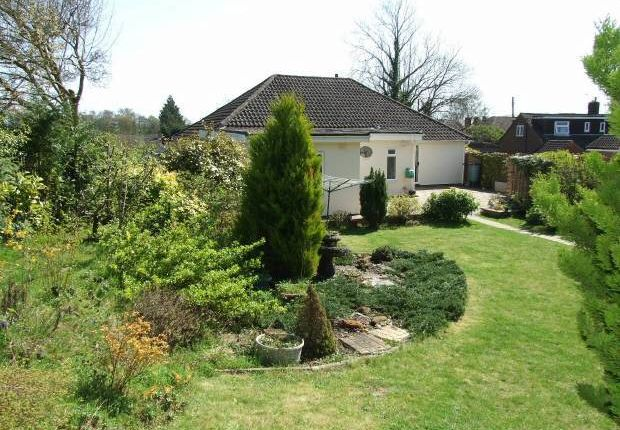 Thumbnail Detached bungalow for sale in East Street, Addington, West Malling