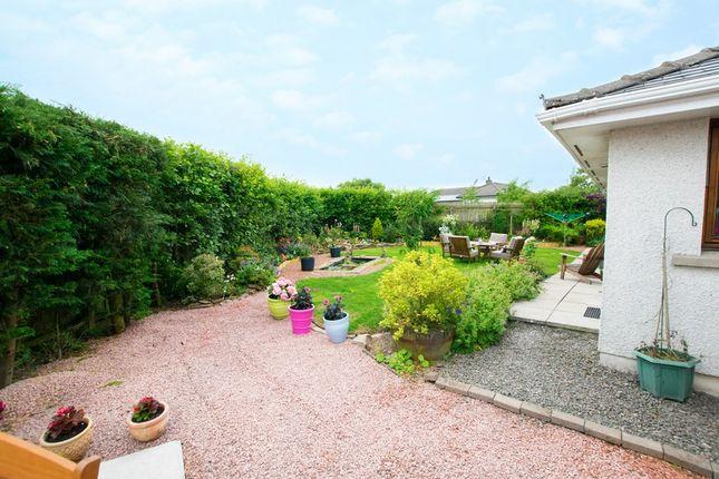 Garden (Copy) of Rumbalara, 3 Victoria Lees, Eaglesfield, Dumfries & Galloway DG11