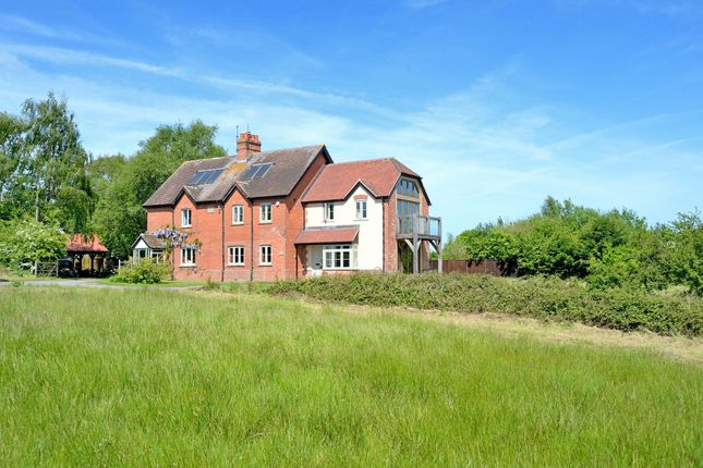 Thumbnail Cottage for sale in Sedgehill, Shaftesbury, Dorset