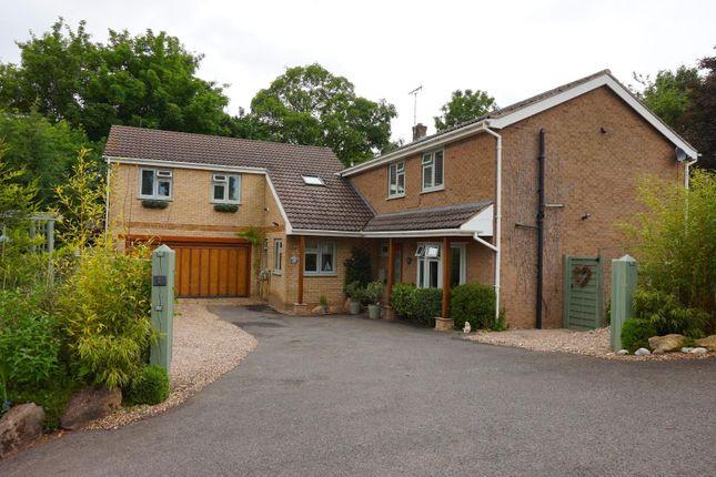 Thumbnail Detached house for sale in Barrowden Lane, South Luffenham, Oakham