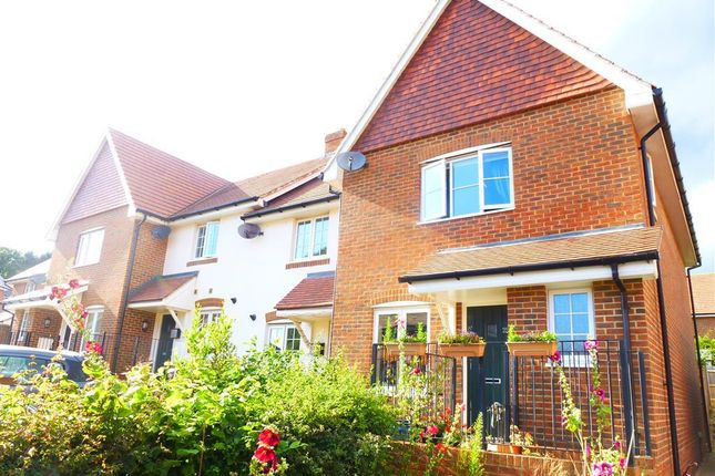 Thumbnail Property to rent in Goldring Avenue, Hellingly, Hailsham