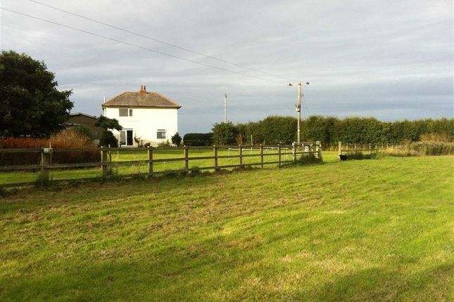 Thumbnail Detached house for sale in Main Road, Cowden, East Yorkshire