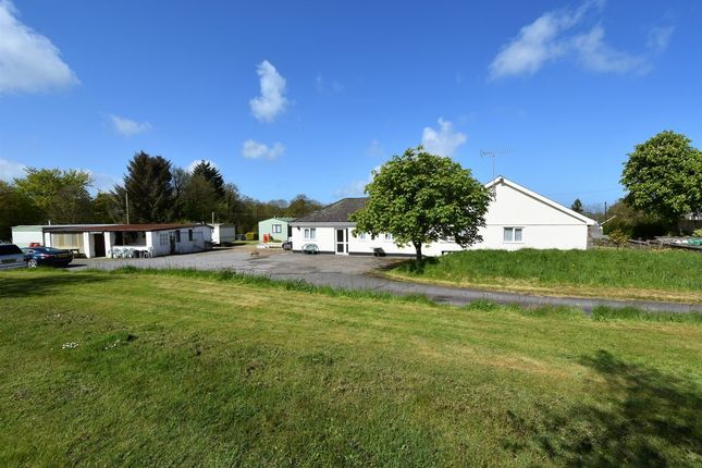 Thumbnail Bungalow for sale in Oakford, Llanarth