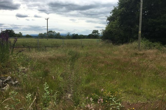 Land for sale in Shobdon, Herefordshire
