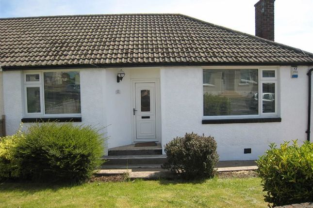 Thumbnail Semi-detached bungalow to rent in West Croft, Seaton, Workington