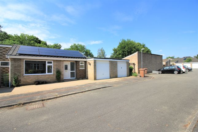3 bed detached bungalow to rent in Brentwood, Norwich NR4