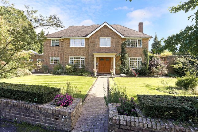 Thumbnail Detached House For Sale In Chiltley Way Liphook Hampshire