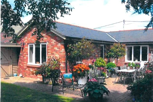 Thumbnail Detached bungalow to rent in Crewe Lane South, Crewe By Farndon, Chester