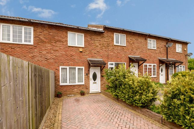 Thumbnail Terraced house to rent in Falcon Way, Ashford