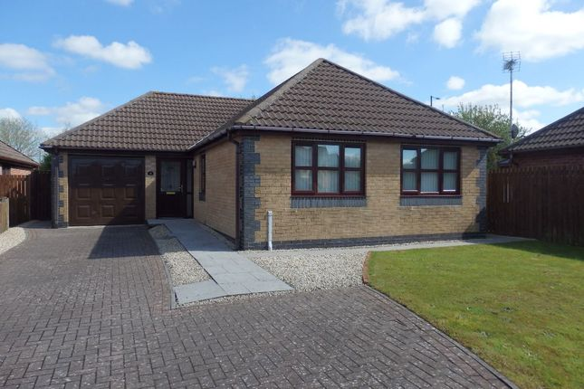 Thumbnail Bungalow to rent in Rhodfa'r Gwendraeth, Kidwelly