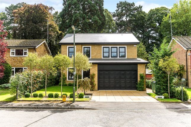 Thumbnail Detached house to rent in Milner Drive, Cobham, Surrey