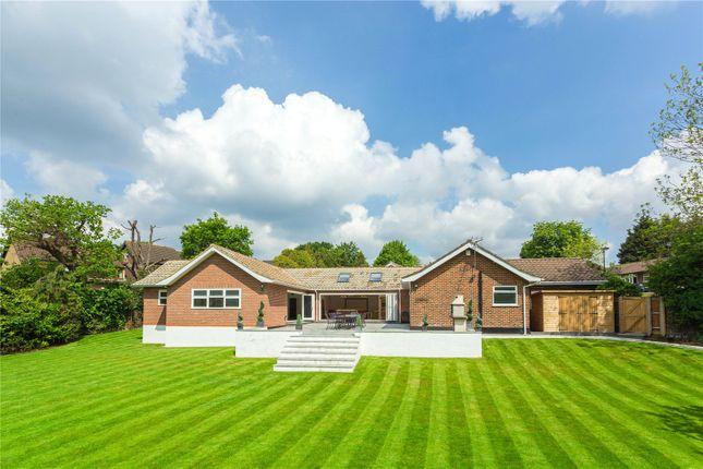 Thumbnail Detached bungalow for sale in Ridgemount Gardens, Enfield