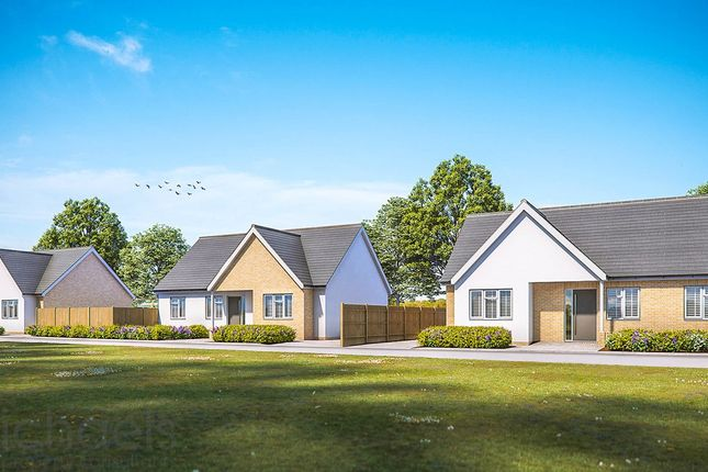 3 bed detached bungalow for sale in Crown Lane South, Ardleigh, Colchester CO7