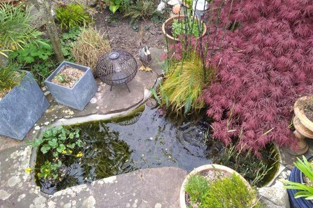 Pond Feature of Henwood Green Road, Pembury, Tunbridge Wells, Kent TN2