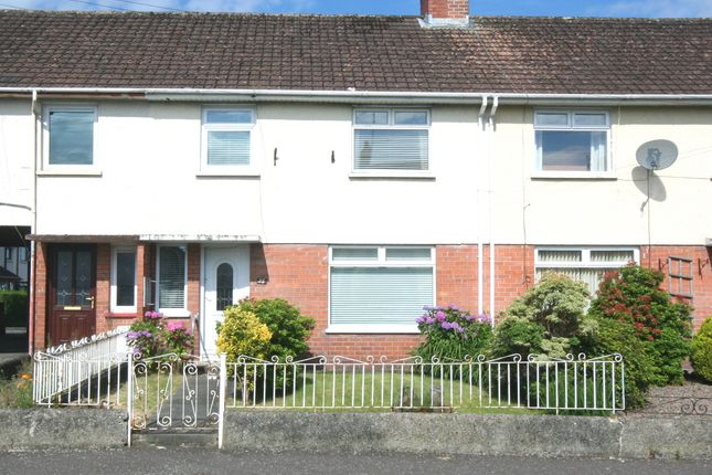 Thumbnail Terraced house to rent in Montgomery Drive, Lisburn