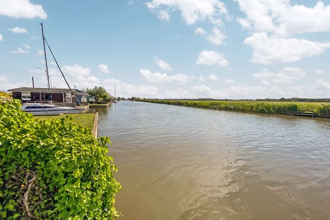 River of North East Riverbank, Potter Heigham, Great Yarmouth NR29
