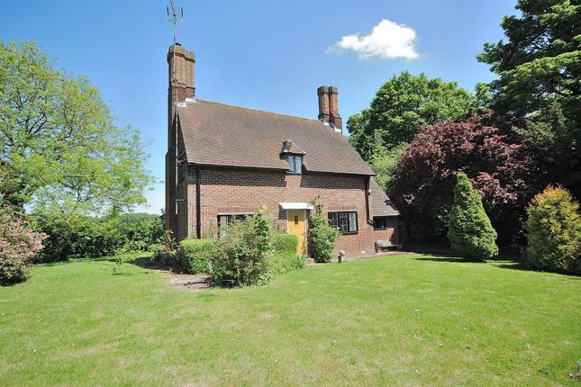 Thumbnail Detached house to rent in Chickney, Broxted, Dunmow