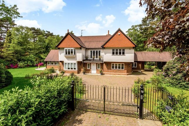 Thumbnail Detached house to rent in Prince Consort Drive, Ascot