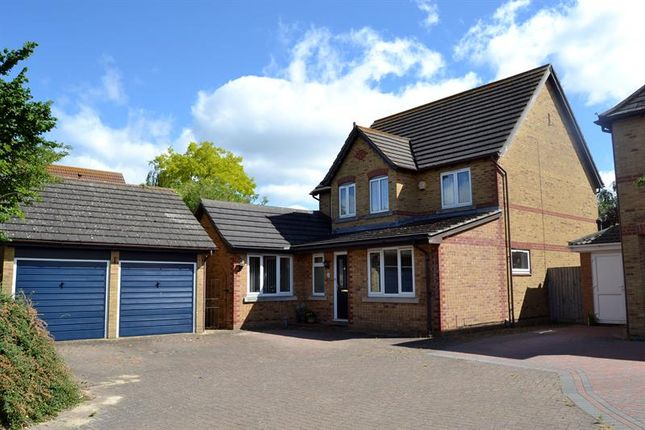 Thumbnail Detached house for sale in Gosbecks View, Colchester