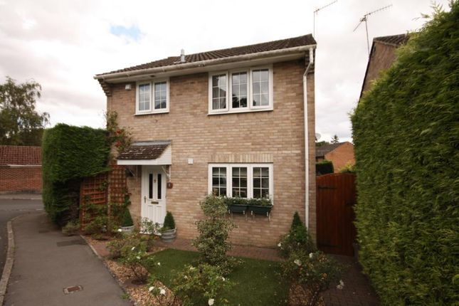 Thumbnail Detached house for sale in Ramsbury Close, Blandford Forum, Dorset