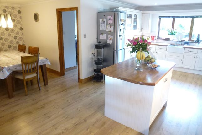 Thumbnail Property to rent in The Loke, Cringleford, Norwich