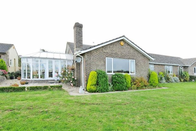 Thumbnail Detached bungalow for sale in Dorchester